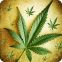 Burn Flying Weed icon