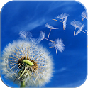 Galaxy Note Dandelion icon
