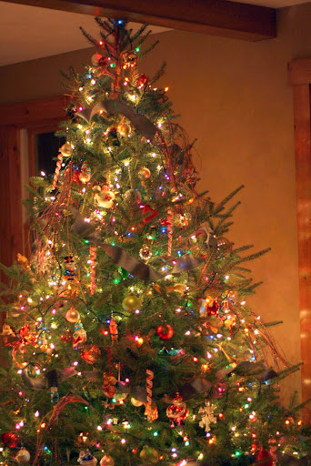 How much do Christmas trees cost in your area? - Straight ...
