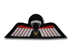wing%20c