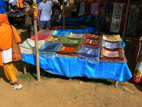 Imagini India Goa: perne la Anjuna