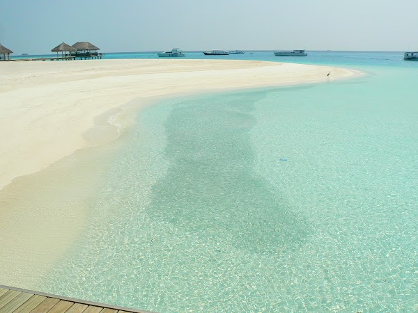 Cazare Maldive: Velassaru bancuri de pesti