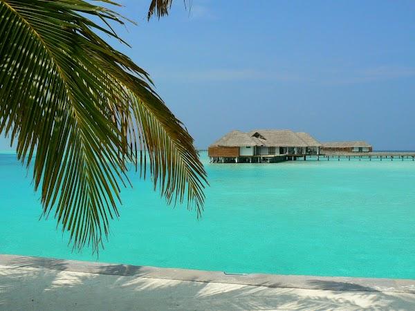 Imagini Maldive: laguna blue Velassaru