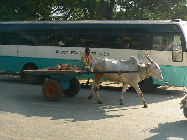 Obiective turistice India: traffic jam Mysore