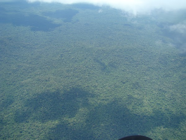 Obiective turistice Venezuela: imagine din avion Canaima.JPG