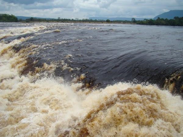 Obiective turistice Venezuela: Apa langa Canaima Lagoon.JPG