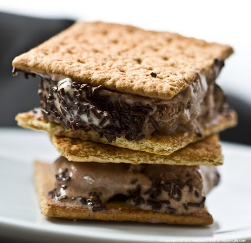 Vegan Smores Ice Cream Sandwich
