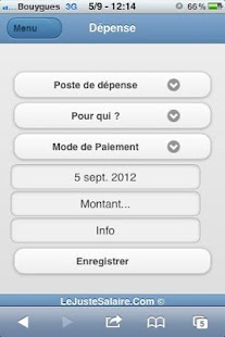Gestion du Budget & Dépenses- screenshot thumbnail