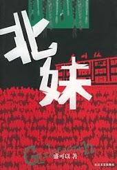 【纽约时报】中国贫穷妇女的故事