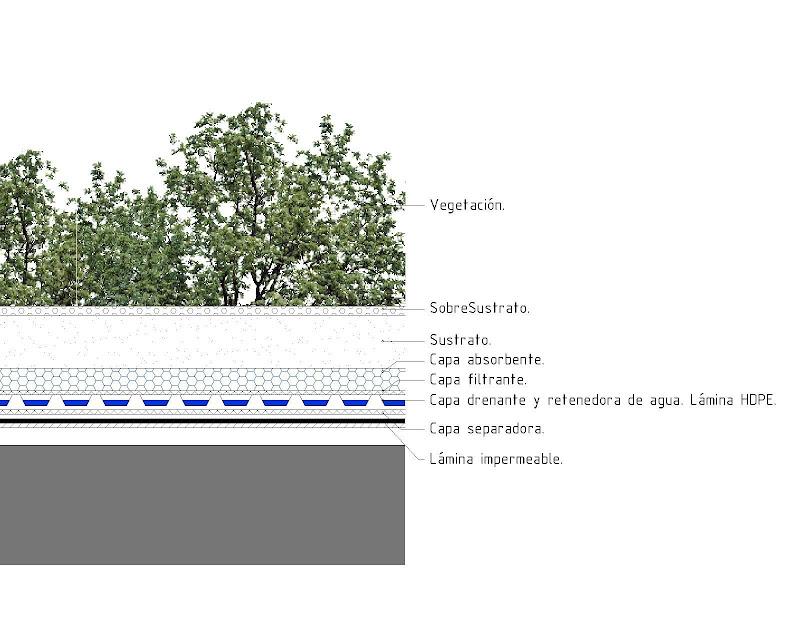 Cubierta Vegetal Sistemas Constructivos Urbanarbolismo