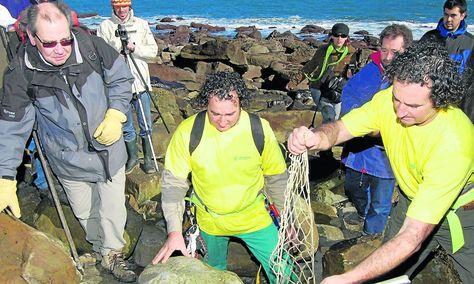 [Imagen: Garcia-Ramos-estegosaurio-Cabo-Lastres_A...0102_6.jpg]
