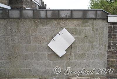 Paint sample garden wall