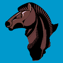 Chess Africa icon