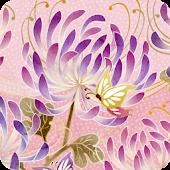 [Nadeshiko]Chrysanthemum A