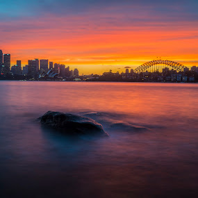 Eye of the Storm by Mitchell Oates - Landscapes Sunsets & Sunrises ( water, skyline, silhouette, sunset, harbour, australia, ocean, cityscape, landscape, opera house, sydney, city )