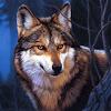 Wolf Jigsaw Puzzles APK