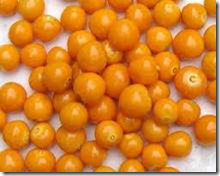 Orange Gooseberries