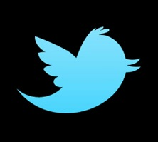 the-new-twitter-logo
