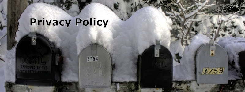 Privacy Policy Banner - Snowcovered Mailboxes - Credit Andrew Larsen