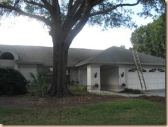 Tile-Roof-Cleaning-33601-Tampa-FL 11-17-2009 2-58-38 AM