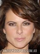 Kate del Castillo, 2008