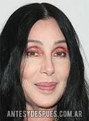 Cher, 2008