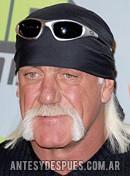 Hulk Hogan, 2008
