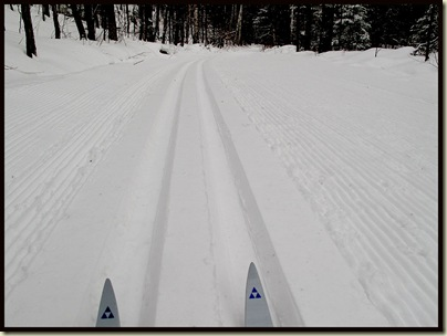 Trail 52 - nicely groomed
