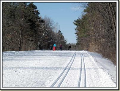 Skiers on Gatineau Parkway