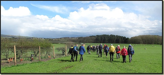 LDWA East Lancs walkers in a field near Aspull