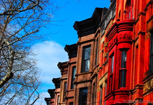 7. brooklyn brownstones