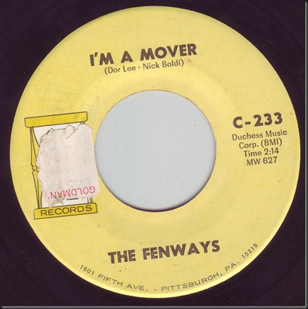 fenways2