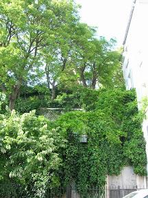 006 - Molino en Montmartre.JPG