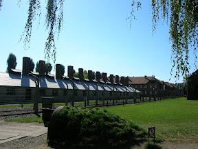 114 - Auschwitz I.JPG