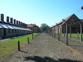 Día 4. Auschwitz.