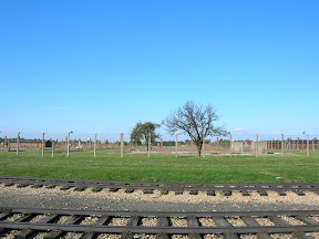 143 - Auschwitz II - Birkenau.JPG