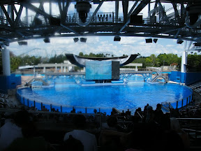 Vídeos Sea World Orlando