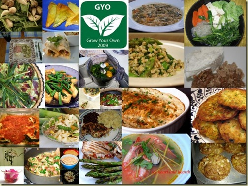 GYO 27 Collage
