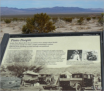 Joshua Tree National Park Trip  (21)