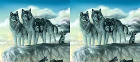 wolf pack an RPG website