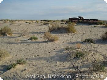 Aral sea Uzbekistan