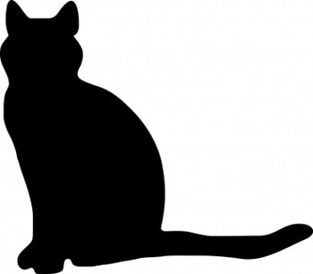 cat sitting in silhouette