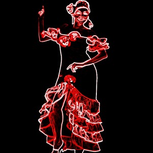 flamenco blogdeimagenes (4)