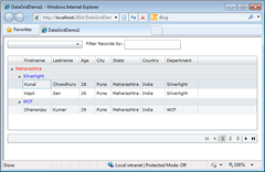 Customizing Group Row Header of Silverlight DataGrid | Kunal Chowdhury