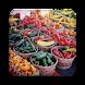 Farmers Market Finder
