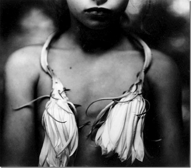 sally mann -night-blooming-cereus 1988-1