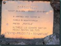 DSCN5167