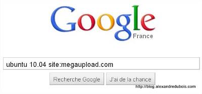 MEGAUPLOAD_google_search_init.jpg