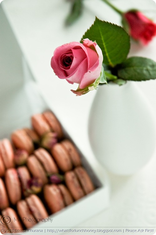 Rosewater and Raspberry Macarons (03) by MeetaK