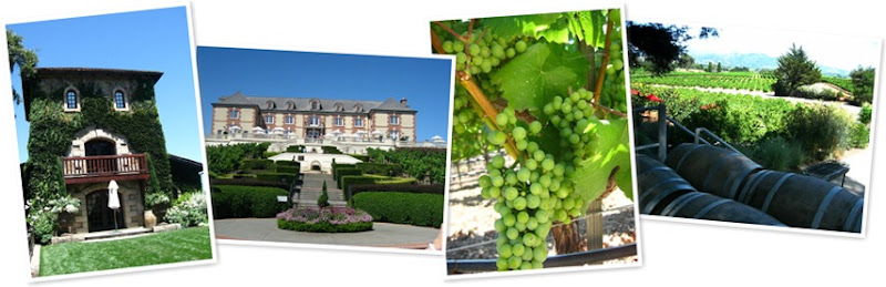 View wineries in Napa and Sonoma